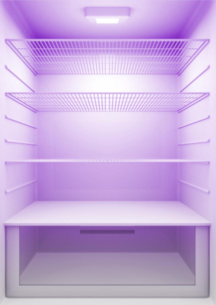 inside-fridge